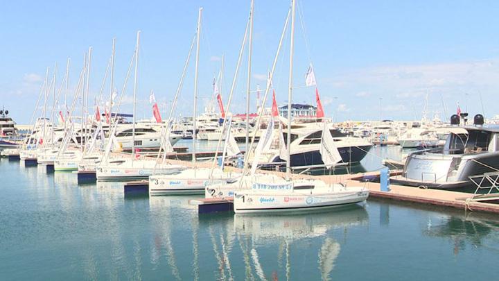 Яхты ставить негде: на Черноморском побережье появится сеть марин