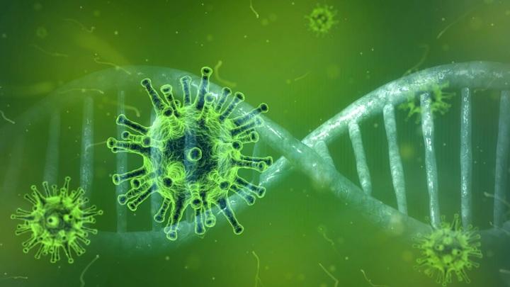 Американские ученые заявили, что обнаружили новый штамм коронавируса