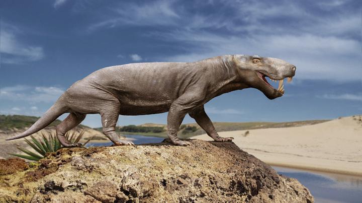 Предки млекопитающих были грозными хищниками.