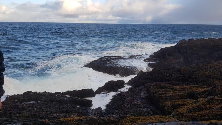 """В районе затонувшей """"Онеги"""" специалисты обследовали 750 квадратных километров"""