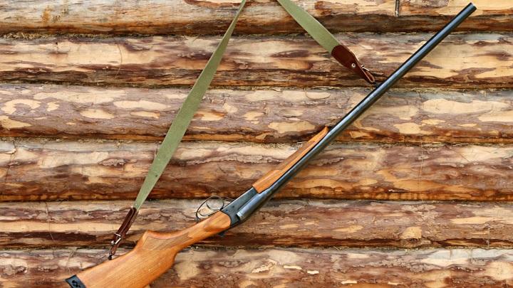 В Нижегородской области возбуждено уголовное дело по факту незаконной охоты на лосей