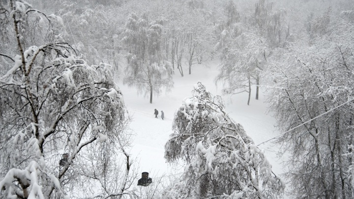 Начавшийся снегопад в Москве принесет больше трети месячной нормы осадков