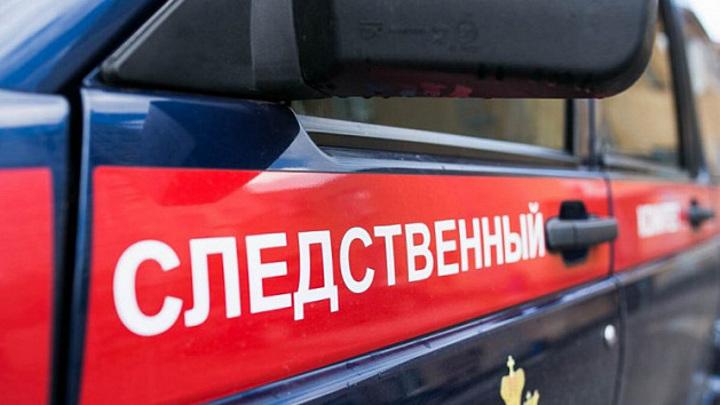 В Новгородской области мать подозревают в убийстве новорожденного