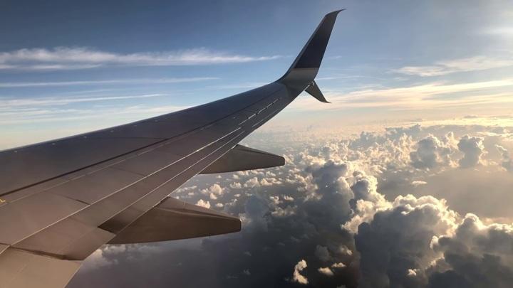 """""""Аэрофлот"""" готов использовать более вместительные самолёты для вывоза россиян"""
