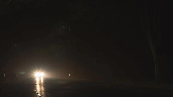В Приморье ночью по трассе бродит табун лошадей