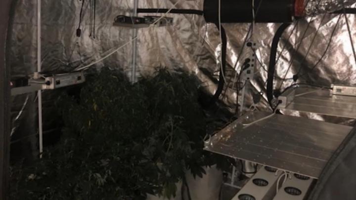 Нижегородец использовал квартиру родственника в качестве нарколаборатории