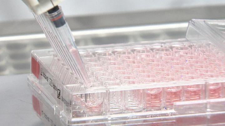 """Испытания на добровольцах крымской вакцины """"Лассо"""" от коронавируса планируются весной"""