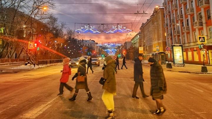 В Мурманской области появится институт инвестиционных уполномоченных