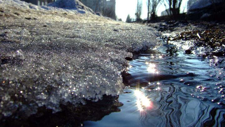 В Москве потеплеет на 23-30 градусов за 36-48 часов