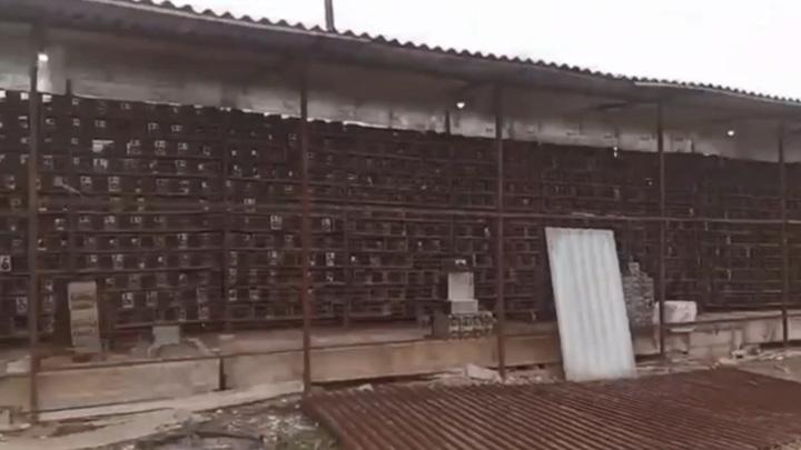 В Абхазии на чайной фабрике обнаружили огромную криптоферму. Видео