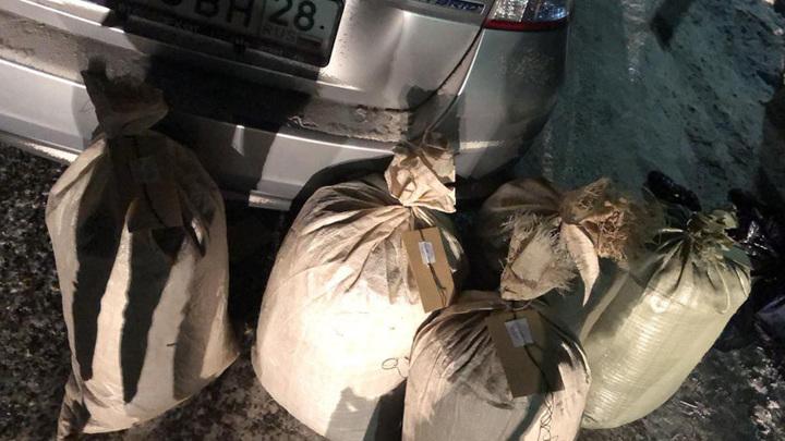 Амурские пограничники изъяли более ста килограммов марихуаны