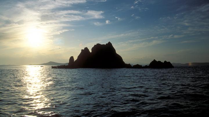 Минобороны вызвало военного атташе США из-за инцидента в Японском море