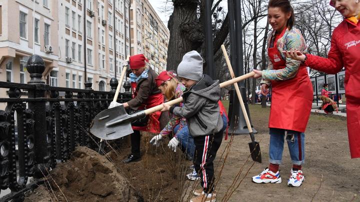 24 апреля в Москве пройдет субботник