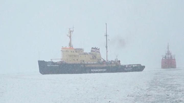 Военные корабли сделали полыньи в акватории Финского залива