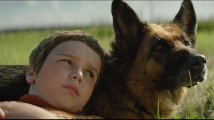 """Семейный фильм """"Пальма"""" появится на больших экранах страны уже сегодня"""