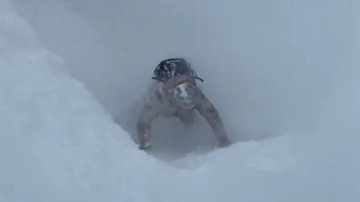 Еще один горнолыжник попал в снежную ловушку в Сочи