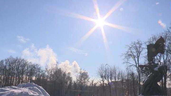 В Орловской области проверят 200 гектаров леса