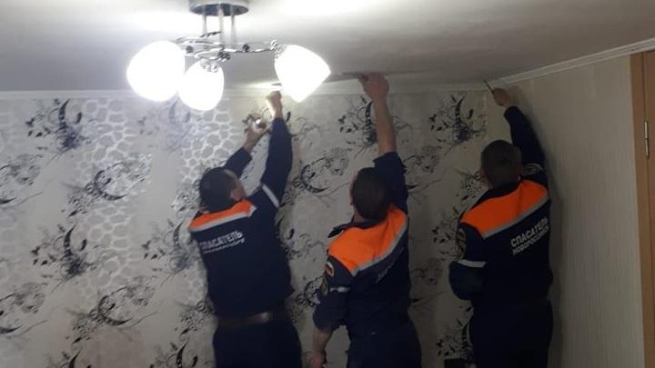 В Новороссийске реанимировали застрявшую в подвесном потолке кошку