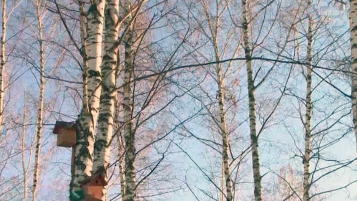 Синоптики предупредили жителей Татарстана о морозах до -14