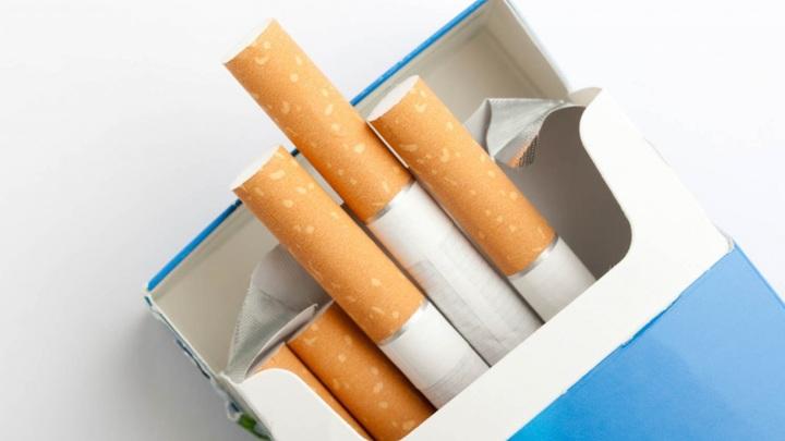 В ряде регионов России выявлено 120 тонн контрабандных табачных изделий