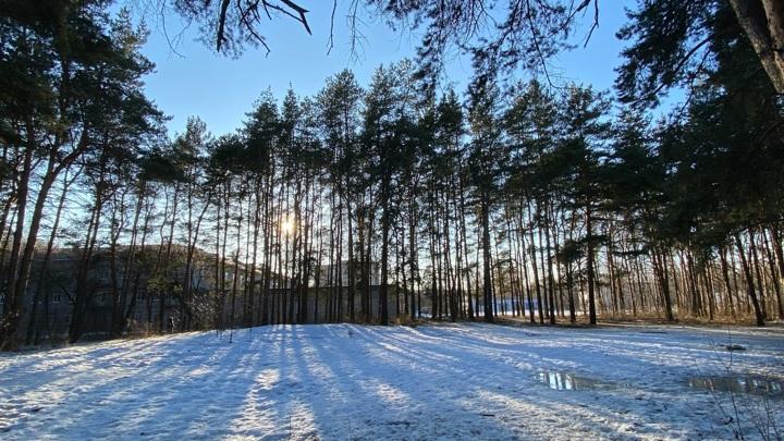 В Тверской области утвердили границы новых особо охраняемых природных зон