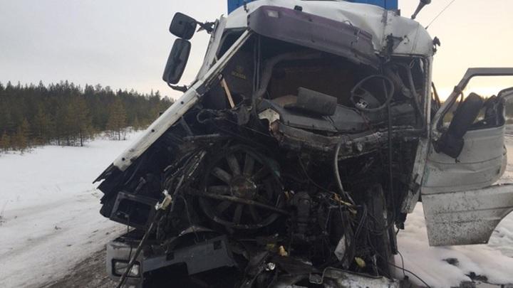 На трассе Сургут-Салехард столкнулись две фуры, пострадал водитель