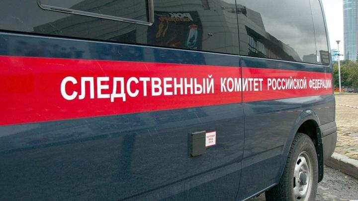 СК возбудил уголовное дело по факту смерти школьницы в Рубцовске