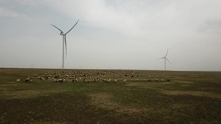 Проблему энергодефицита в Калмыкии помог решить степной ветер