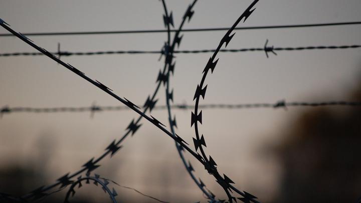 Бытовые конфликты побудили жительницу Полярного на убийство супруга