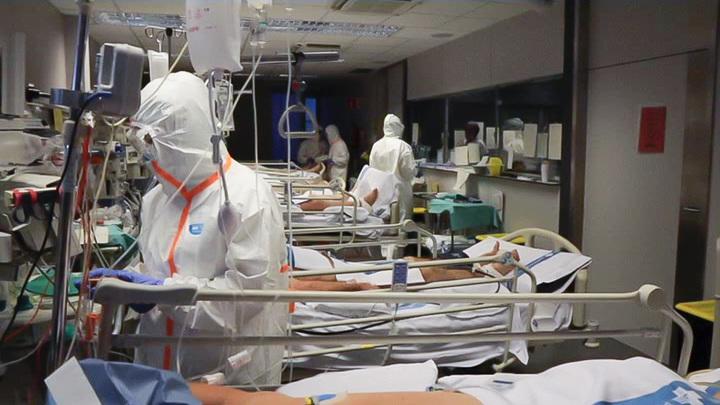 В России выявлены 8 632 случая COVID-19 за сутки