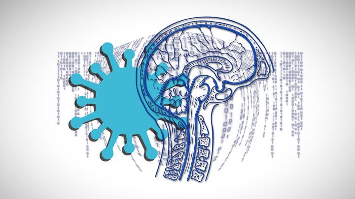 Люди, переболевшие COVID-19, часто отмечают проблемы с мышлением, которые начались во время болезни и сопровождают их даже после выздоровления.