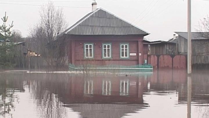 Костромская река Шокшанка вышла из берегов и угрожает галичанам