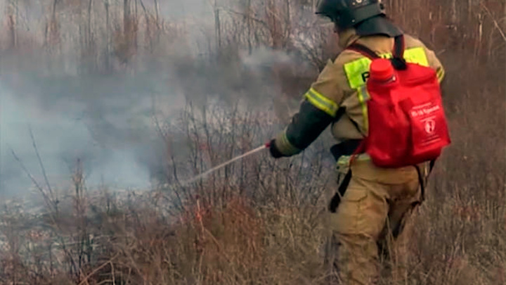 В Забайкалье действуют девять лесных пожаров