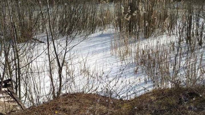 В Ярославской области обнаружили водоем с белой жидкостью