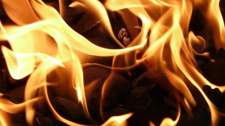 Ночью под Саратовом тушили крупный природный пожар