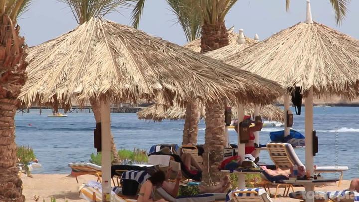Спрос будет высоким: в АТОР рассказали о ценах на курорты Египта
