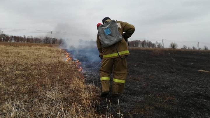 Площадь природных пожаров стремительно растет
