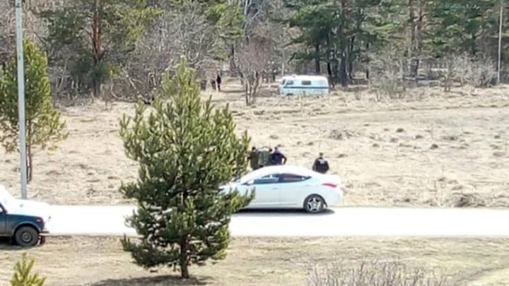 В Кемеровской области найдено расчлененное женское тело