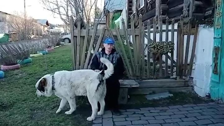 Заблудившегося жителя Урала спасли с помощью дрона