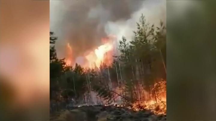 Жители регионов приходят на помощь в тушении лесных пожаров