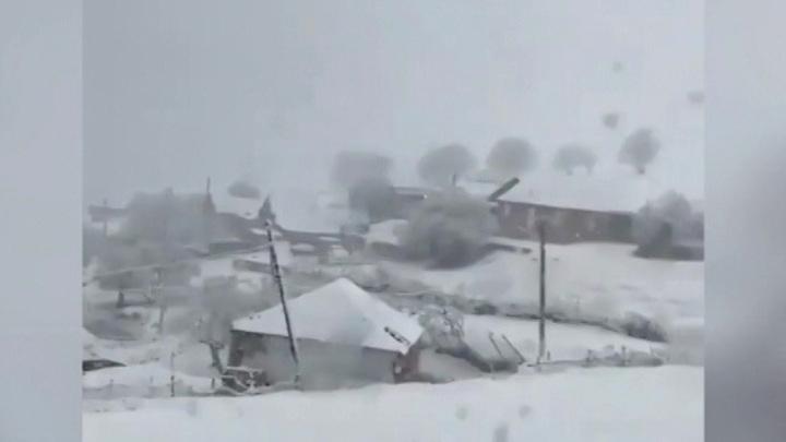 На юг России ненадолго вернулась зима
