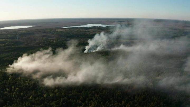 Проявление глобального тренда: что происходит на Русской равнине