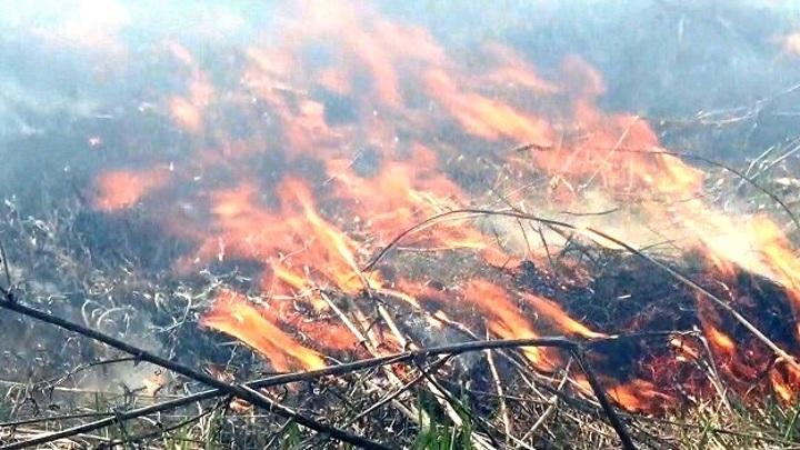 В Катангском и Усть-Кутском районах ввели режимы ЧС из-за лесных пожаров