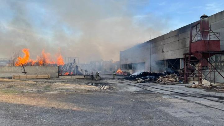 В Ульяновской области проводится проверка по факту возгорания жилых домов
