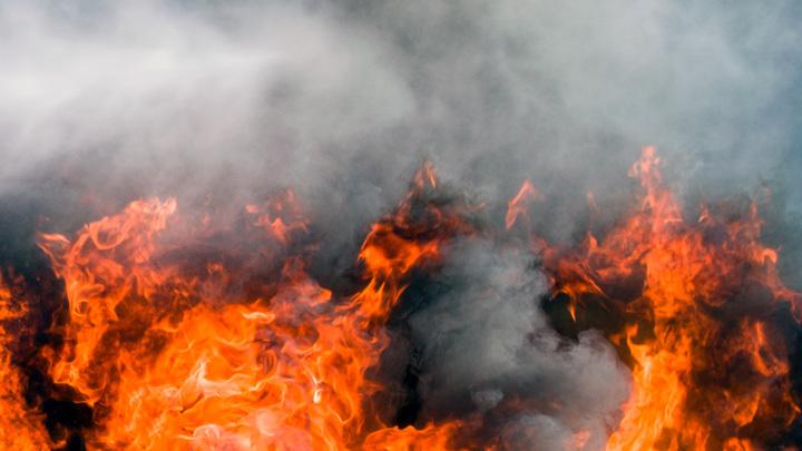 Десантники томской авиабазы потушили первый лесной пожар в авиационной зоне