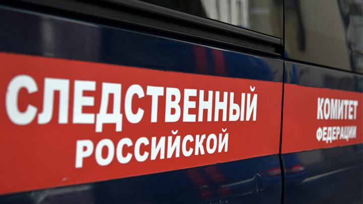 Плюнул в лицо: в Новосибирске проверят информацию об издевательствах мужчины над ребенком