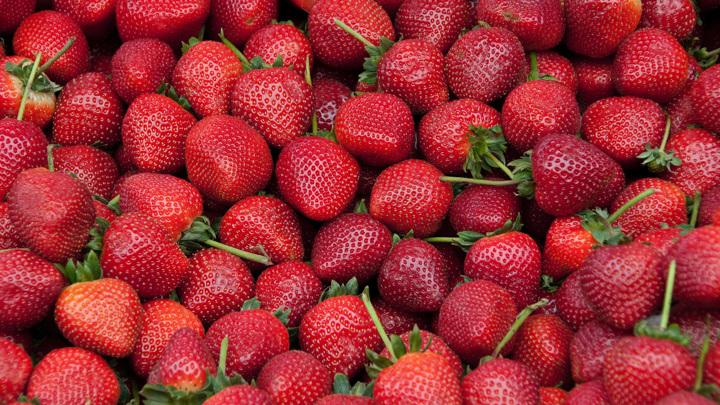 Самые полезные летние овощи и фрукты: что и как есть для здоровья