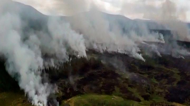 В Красноярском крае уменьшилась площадь лесных пожаров