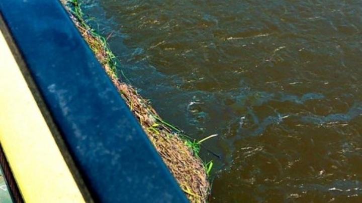 Загрязнение Оки нефтепродуктами не привело к экологической катастрофе