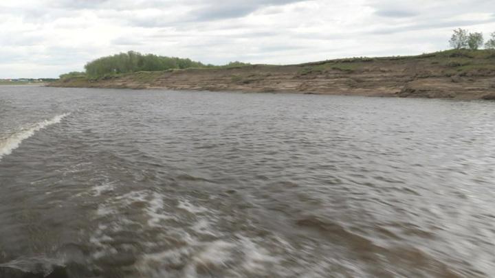 Экологи оценили последствия разлива нефти в Коми